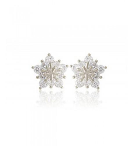Ladies Crystal Earrings Earring Silver