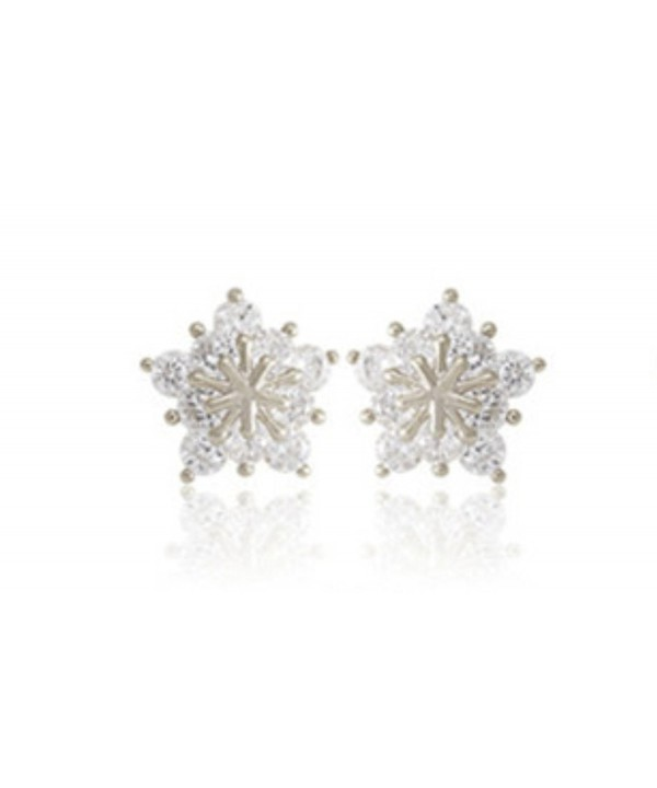 Ladies Crystal Earrings Earring Silver